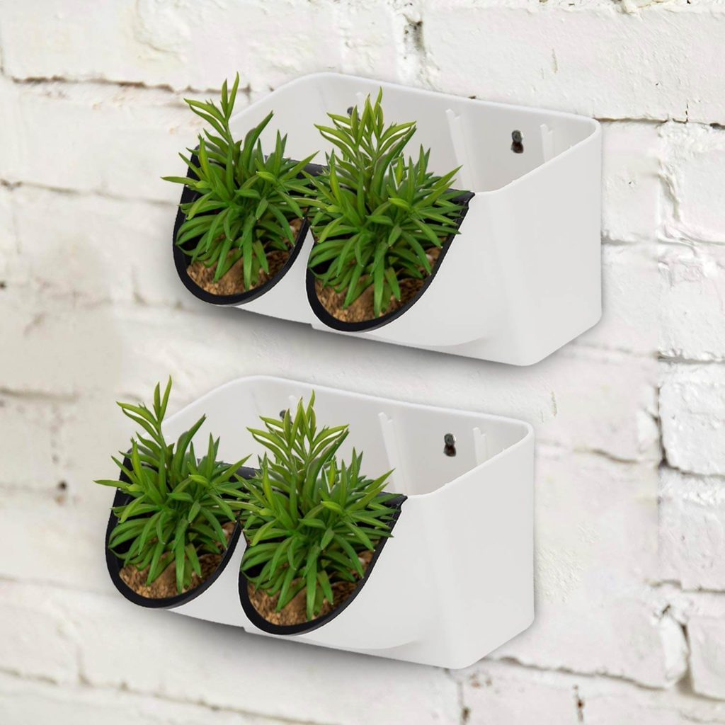 indoor plants for wall